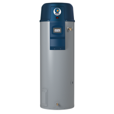 Premier GP650YVIT Direct Vent High Efficiency 50-Gallon Gas Water Heater
