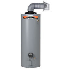 Proline GS640YBDS Direct Vent 40 Gallon Gas Water Heater